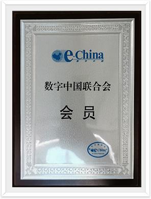 数字中国联合会会员证书